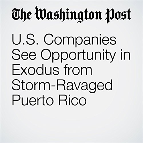 U.S. Companies See Opportunity in Exodus from Storm-Ravaged Puerto Rico audiobook cover art