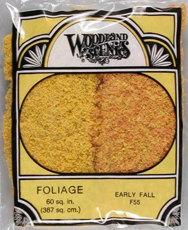 Woodland Scenics WS 55 Early Fall Mix Foliage