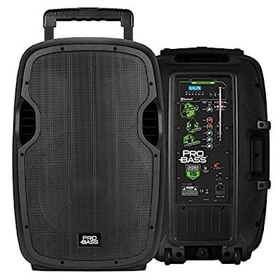 Pro Bass Underground 15, Portable Battery Powered
