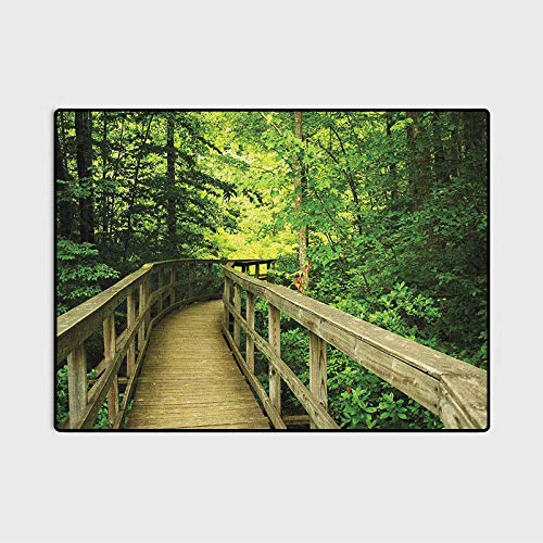 Nature Area Rug Park Summertime Scenic View Environment Ecology Nature Holidays Adventure Scene vaccuums for Carpet and Floors Khaki Green 6 x 8.8 Ft