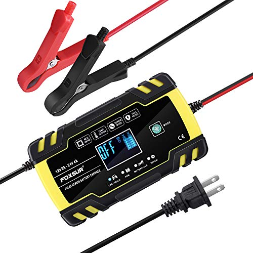 Automatic Smart Battery Charger/Maintainer 12V/8A 24V/4A Pulse Repair Charger with LCD Display for Golf Cart Motorcycle Car Marine Truck Yacht Mower, Auto-Voltage Detection, Finger Touch Charging Mode
