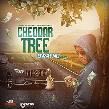 Cheddar tree
