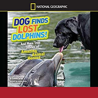 Dog Finds Lost Dolphins audiobook cover art