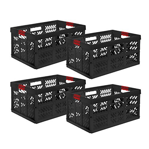 keeeper 4 x Profi-Klappbox Ben, 45 Liter, PP, Graphit/rot