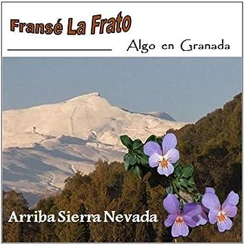 Arriba Sierra Nevada