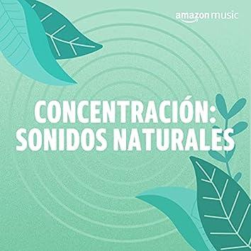Concentración: Sonidos Naturales
