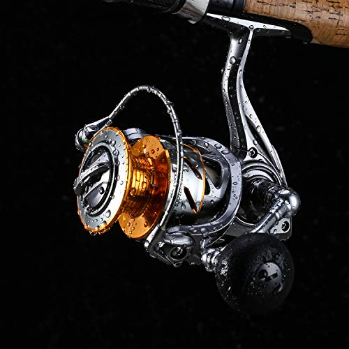 SeaKnight Rapid Saltwater Spinning Reel