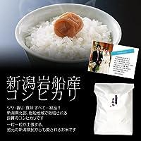 【結婚式の引出物に】オリジナルメッセージカード付き!新潟岩船産コシヒカリ 5kg