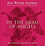 Buy In the Arms of Angels: True Stories of Heavenly Guardians