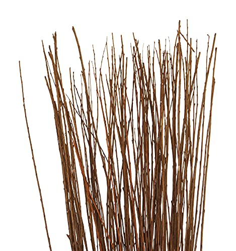 Green Floral Craft   60-70 Stem Dried Asian Willow Decorative Branches 3-4 Feet Tall - Perfect Home Decoration and Floor Vase Filler (Light Mahogany)