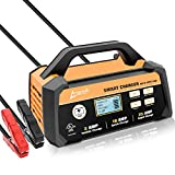 Ampeak 2/10/25A Smart Battery Charger/Maintainer 12V Fully Automatic...