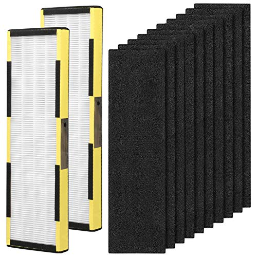 2 Pack Replacement FLT4825 True HEPA Filter B with 10 Pack Activated Carbon Pre-Filters for GermGuardian Air Purifier AC4825, AC4300BPTCA, AC4900CA, AC4825DLX, AC4850PT, CDAP4500BCA, CDAP4500WCA