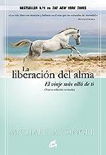 La liberación del alma: El viaje más allá de ti mismo (Advaita) (Spanish Edition)