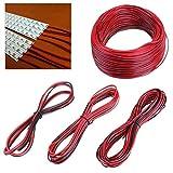 Joy MacPherso 2 Pin Verlängerungskabel Anschlusskabel for 3528 5050 LED-Streifen-Licht Licht-Streifen (Größe : 10M)