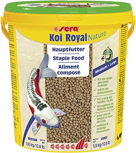 Sera - Koi Royal HF large - Nourriture pour poissons - Carpes koï - 1 x 5,8 kg