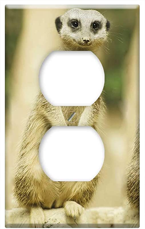 Switch Plate Outlet Cover Meerkat Snout Baby Mammal Guard Adapted Suricate