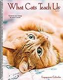 What Cats Teach Us 2022 Engagement Calendar, Spiral Planner