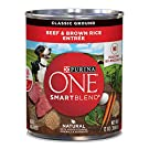 Purina ONE Wholesome Beef/Brown Rice Dog Food (13-oz, case of 12)