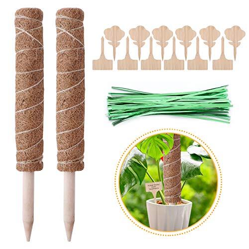 Herefun 2 Stücke 40 cm Pflanzstab Kokos, Pflanzstab Pflanzenstütz Stange mit 12 Holzetiketten, Kokos Moos Stick Für Pflanzenunterstützung Erweiterung Klettern Zimmerpflanzen Creeper