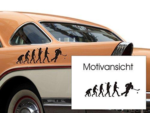 Autoaufkleber - Evolution Hockey - Sportmotiv (300 mm x 100 mm, Grau)