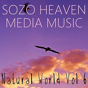 Natural World, Vol. 6