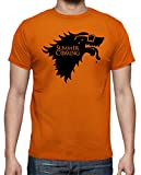 The Fan Tee Camiseta de Hombre Juego de Tronos Winter is Comming Summer Divertidas L