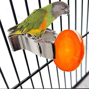 Oiseaux Porte-Nourriture pour Animaux Perroquet Pinces pour Cage à Oiseaux Mangeoire à Fruits pour Oiseaux Support de Nourriture pour Oiseaux Perroquet Oiseau Cage Accessoires pour Canaris 2 Pièces