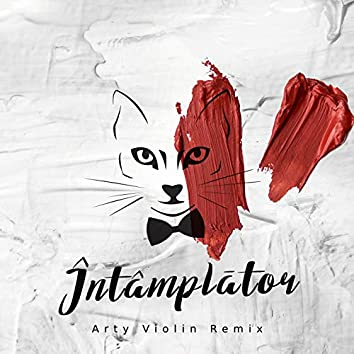 Intamplator (Arty Violin Remix)