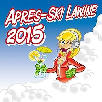 Apres-Ski Lawine 2015