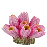 Tinsow Resin Aquarium Coral Ornaments, Artificial Coral Reef Decor for Small Fish Tank & Landscape Decoration (Small, Pink)