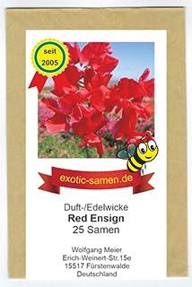 Edelwick - Duftwicke - Bienenweide - Red Ensign - herrlicher Duft - bis 180 cm - 25 Samen
