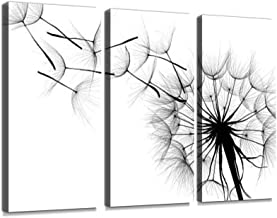 Black and White Photo of a Dandelion Being Blown Print On Canvas Wall Artwork Modern Photography Home Decor Unique Pattern Stretched and Framed 3 Piece