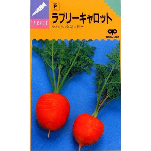 にんじん 種 ラブリーキャロット 小袋(約2dl)