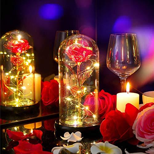 Diealles Shine Kit de Rosas La Bella y la Bestia, Rosa 24k Chapado en Oro Rosa Flor luz LED con Cuentas de Oro en cúpula de Vidrio en Base de Madera para día de San Valentín, Navidad