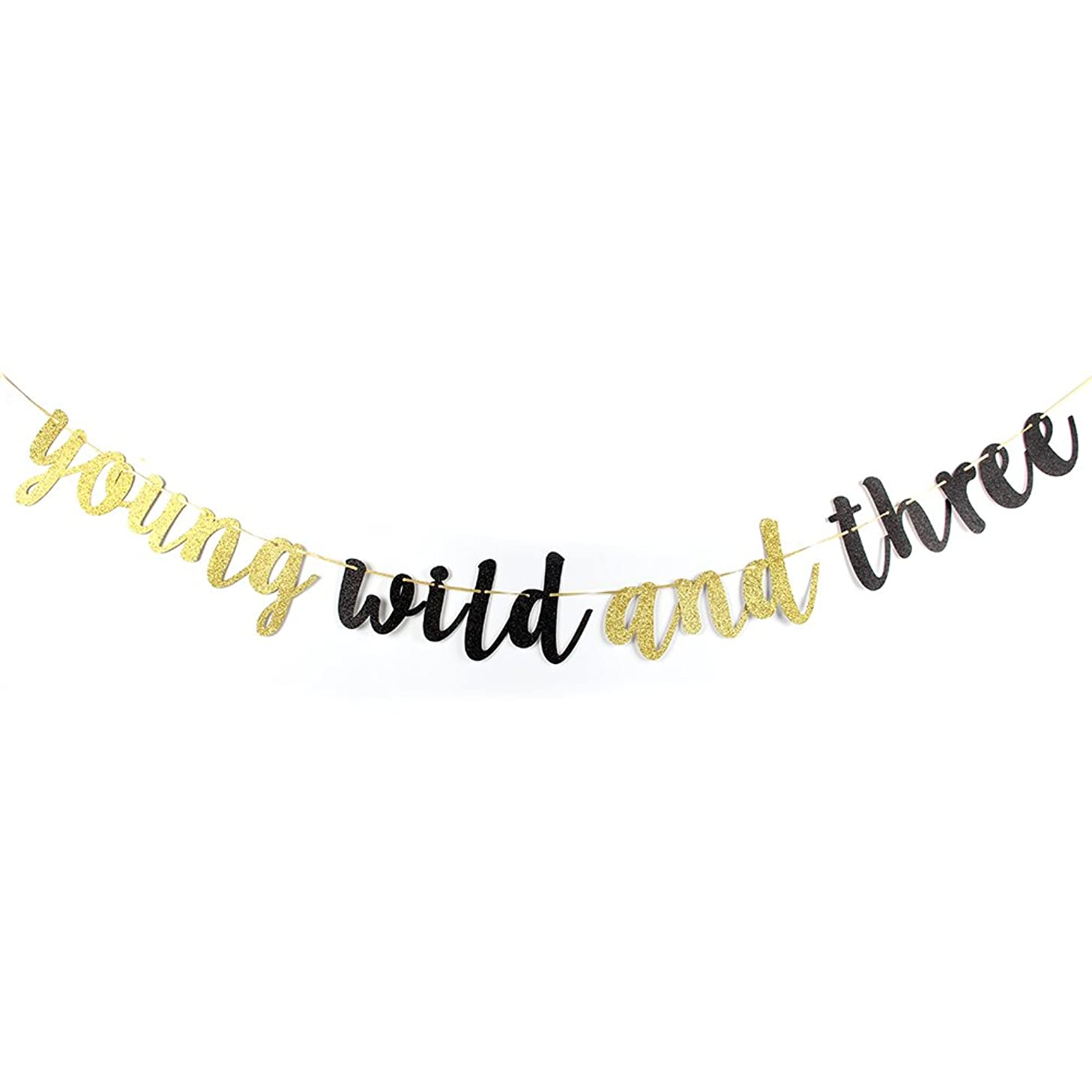 Karoo Jan Young Wild and Three Banner -Gold Black Glitter Happy 3rd Birthday Party Decoration Bunting Photo Props,Baby Party Supplies