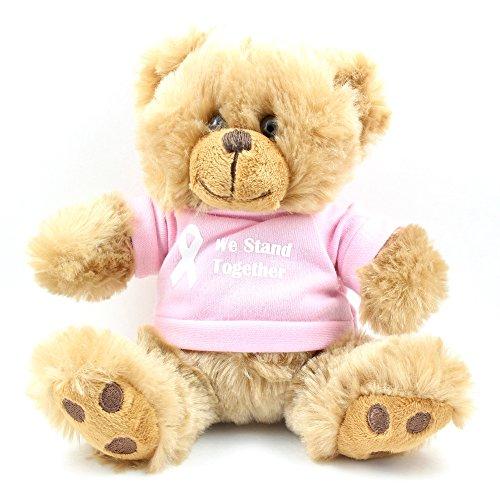Pink Awareness Teddy Bear