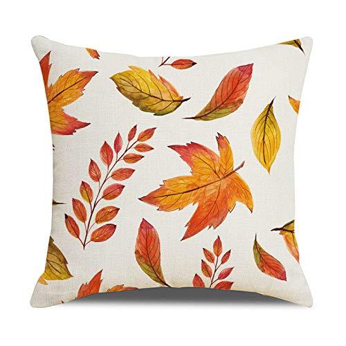 Lynn Fall Elements - Funda de cojín con diseño de motivos de otoño, decoración de una sola cara