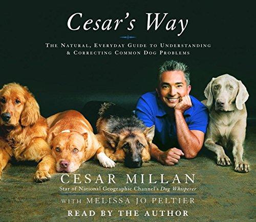 『Cesar's Way』のカバーアート