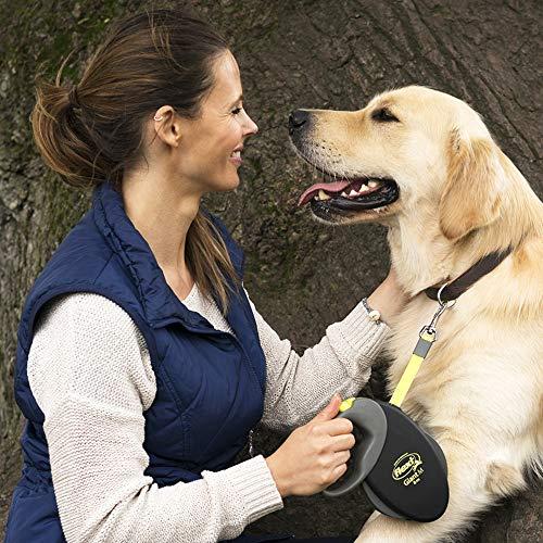 Flexi Roll-Leine GIANT L 8 m Gurt für Hunde bis 50 kg, schwarz/neongelb - 6