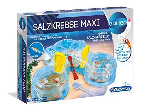 Galileo 69350.4 - Salzkrebse Maxi, Entdeckerspielzeug