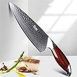 VG10 cuchillo de acero japonés Aus10 de cocina del cuchillo de 8 pulgadas de Damasco chef de cocina profesional cuchillos carne sashimi Con palo de rosa de la manija NUEVO (Color : Nature Leopard)