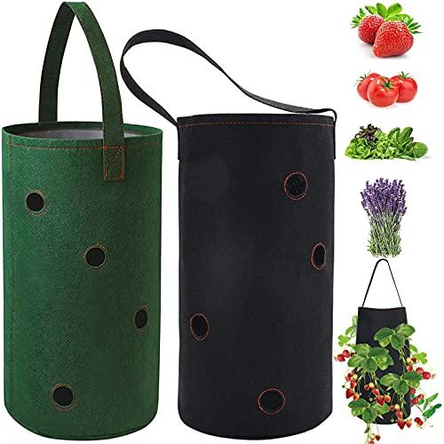 Sacchetti per verdure Piante Fiori Piante Sacchetto di fragole Borsa da appendere Borsa multifunzionale per la coltivazione delle piante Per ortaggi che crescono fiori Piante erbacee confezione da 2