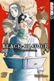 Black Clover 17: Vernichtung oder Rettung - Yuki Tabata