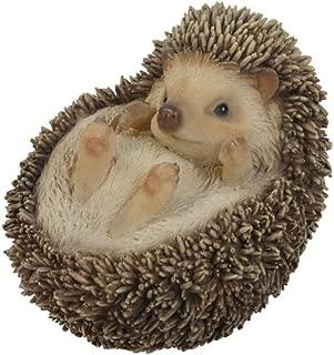 Best hedgehog lawn ornament Reviews
