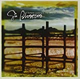 Outside Looking In: The Best of the Gin Blossoms von Gin Blossoms
