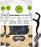 Biodegradable Dental Floss Picks - Charcoal Thread Flossers for Adults & Kids, Natural Teeth Whitening, Eco Friendly Plastic Free Handle, Toothpick Stick Soft on Gums, Zero Waste Vegan Threader, 100x