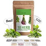 Herb Seeds Vault [10 Variety - 3000 Seeds]- Heirloom Non GMO - Herbs...