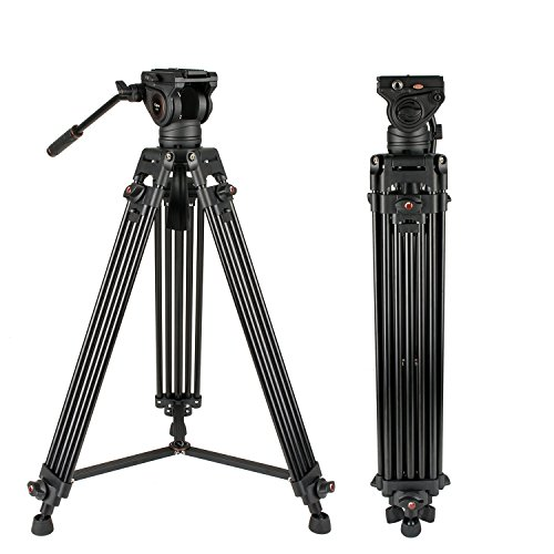 Cayer BV30 Heavy Duty Video Tripod 64 inches Professional Aluminum Tripod Leg with K3 Fluid Head MidLevel Spreader Max Loading 132 LB 360 Degree Fluid Head for DSLR Camcorder Camera