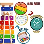 Xylophone - Wooden Toys Make a Great Musical Toys - Inc. FREE SONG SHEETS - Glockenspiel - Perfect for for Budding…