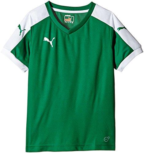 Puma T-Shirt Pitch Short Sleeve, Camiseta de Fútbol para Niños, Verde (Power Green/White), 15-16 Años (Talla del Fabricante: 176)